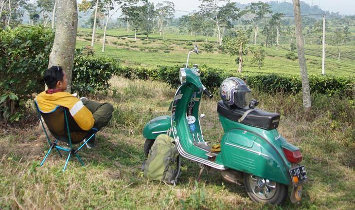 kebun teh di ciater subang
